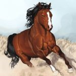 Цікаві відомості про коней